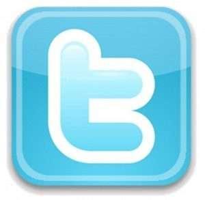 Twitter-Logo-300x293-300x293